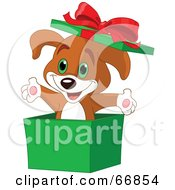 Royalty Free RF Clipart Illustration Of A Cute Puppy Popping Out Of A Green Christmas Box by Pushkin