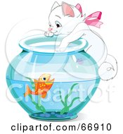 White Kitten Hanging On And Reaching Into A Goldfish Bowl