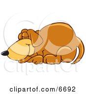Brown Dog Mascot Cartoon Character Curled Up And Sleeping