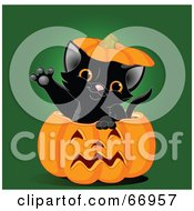 Royalty Free RF Clipart Illustration Of A Cute Black Kitten Reaching Its Paw Out Of A Halloween Pumpkin
