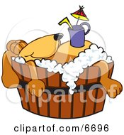 Brown Dog Mascot Cartoon Character With A Drink On His Belly Taking A Bath