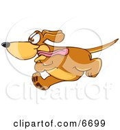 Brown Dog Mascot Cartoon Character Running Obsessively After Something