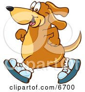 Brown Dog Mascot Cartoon Character Wearing Tennis Shoes And Taking A Walk