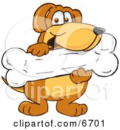 Brown Dog Mascot Cartoon Character Holding A Big Doggy Bone Treat
