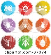 Digital Collage Of Round Colorful Insect Buttons