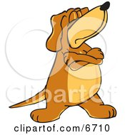 Brown Dog Mascot Cartoon Character With Crossed Arms Disobeying Commands