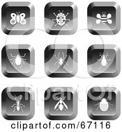 Digital Collage Of Square Chrome Insect Buttons