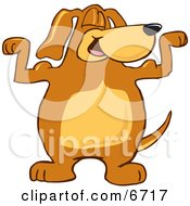 Brown Dog Mascot Cartoon Character Flexing His Bicep Arm Muscles Clipart Picture by Toons4Biz