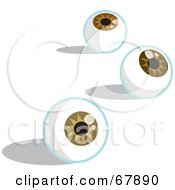 Three Brown Eyeballs