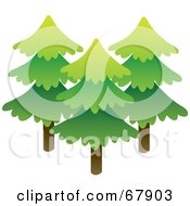 Royalty Free RF Clipart Illustration Of Three Tall Evergreen Trees by Rosie Piter