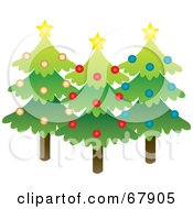 Three Evergreen Christmas Trees With Stars And Ornaments