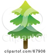 Royalty Free RF Clipart Illustration Of A Single Tall Evergreen Tree by Rosie Piter