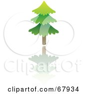 Royalty Free RF Clipart Illustration Of An Evergreen Tree With A Reflection by Rosie Piter