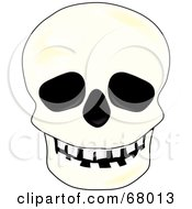 Royalty Free RF Clipart Illustration Of A Spooky White Human Skull With Black Eye Sockets