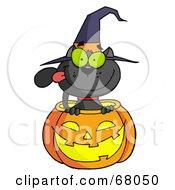 Black Witch Cat Sitting Inside Of A Pumpkin