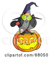 Royalty Free RF Clipart Illustration Of A Black Witch Cat Sitting Inside Of A Pumpkin