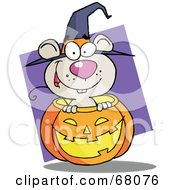 Royalty Free RF Clipart Illustration Of A Happy Mouse Popping Out Of A Carved Halloween Pumpkin On Purple by Hit Toon
