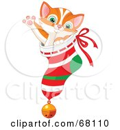 Royalty Free RF Clipart Illustration Of A Cute Christmas Kitten Reaching Up Out Of A Stocking by Pushkin