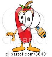 Chili Pepper Mascot Cartoon Character Looking Through A Magnifying Glass