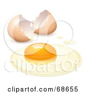 Royalty Free RF Clipart Illustration Of A Cracked Open Egg With The Yolk And The White On A Surface by Oligo