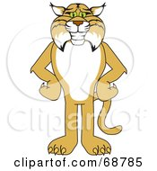 Bobcat Character Standing With His Hands On His Hips