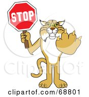 Bobcat Character Holding A Stop Sign