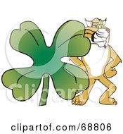 Royalty Free RF Clipart Illustration Of A Bobcat Character With A Clover by Toons4Biz