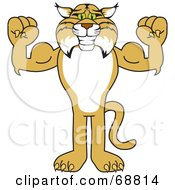 Bobcat Character Flexing