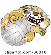 Royalty Free RF Clipart Illustration Of A Bobcat Character Grabbing A Volleyball by Toons4Biz