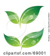 Royalty Free RF Clipart Illustration Of A Digital Collage Of Green Dewy Leaves