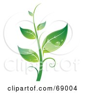 Royalty Free RF Clipart Illustration Of A Dewy Green Organic Seedling Plant