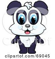 Standing Cute Baby Panda