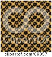 Royalty Free RF Clipart Illustration Of A Tan Leopard Print Background With Black Rosettes by Arena Creative