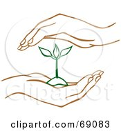 Royalty Free RF Clipart Illustration Of A Pair Of Human Hands Protecting A Green Seedling Plant by Cherie Reve #COLLC69083-0099