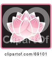 Beautiful Pink Lotus Flower On Black With Blue Trim