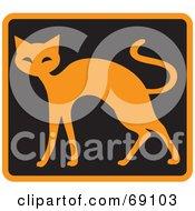 Orange Cat On Black