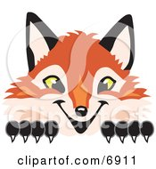 Clipart Picture Of A Fox Mascot Cartoon Character Peeking by Toons4Biz #COLLC6911-0015