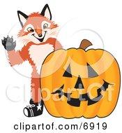 Fox Mascot Cartoon Character With A Halloween Pumpkin