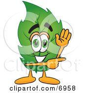 Leaf Mascot Cartoon Character Waving And Pointing