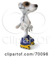 Royalty Free RF Clipart Illustration Of A 3d Jack Russell Terrier Pooch Character Roller Blading Pose 1