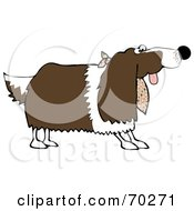 Royalty Free RF Clipart Illustration Of A Springer Spaniel Dog Wearing A Cloth Around His Neck