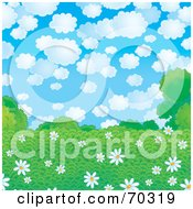 Royalty Free RF Clipart Illustration Of A Background Of White Daisies In A Green Field Under A Cloudy Sky