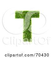 Grassy 3d Green Symbol Capital T