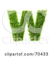 Grassy 3d Green Symbol Capital W