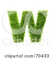 Royalty Free RF Clipart Illustration Of A Grassy 3d Green Symbol Capital W