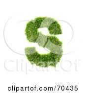 Grassy 3d Green Symbol Capital S