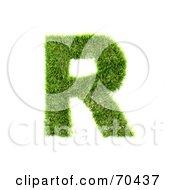 Grassy 3d Green Symbol Capital R