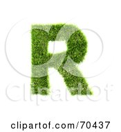 Grassy 3d Green Symbol Capital R by chrisroll