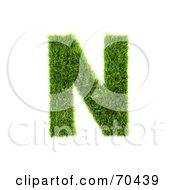 Grassy 3d Green Symbol Capital N