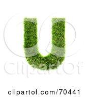 Grassy 3d Green Symbol Capital U